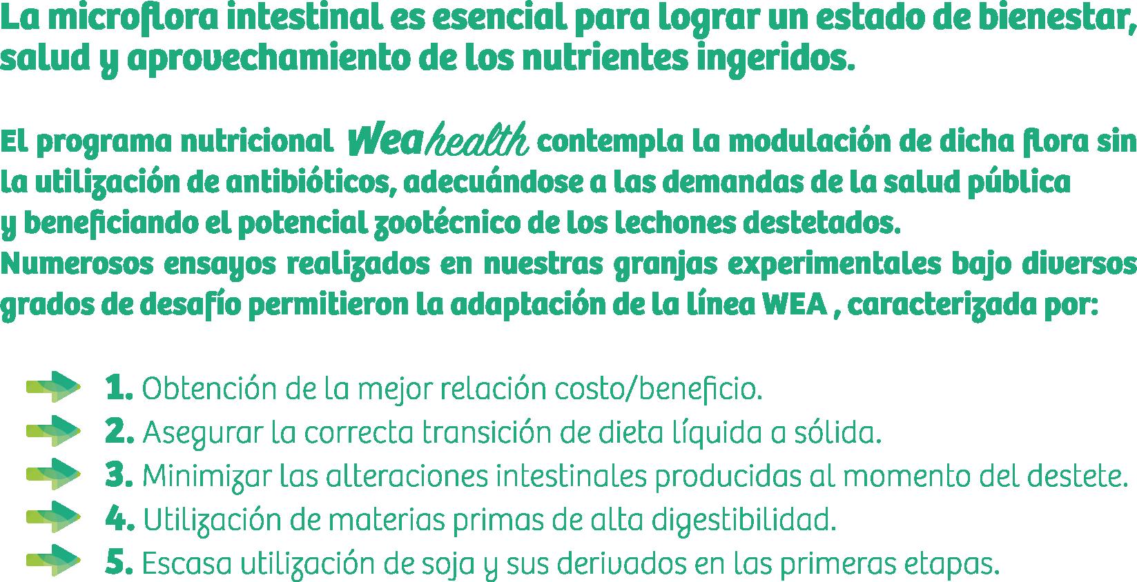 tictRecurso 2